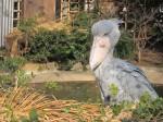 Bueno Ueno Zoo