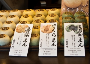On our journey through the wind and rain, we sough shelter in a small shop and warmed up by sharing some warm sakura buns.