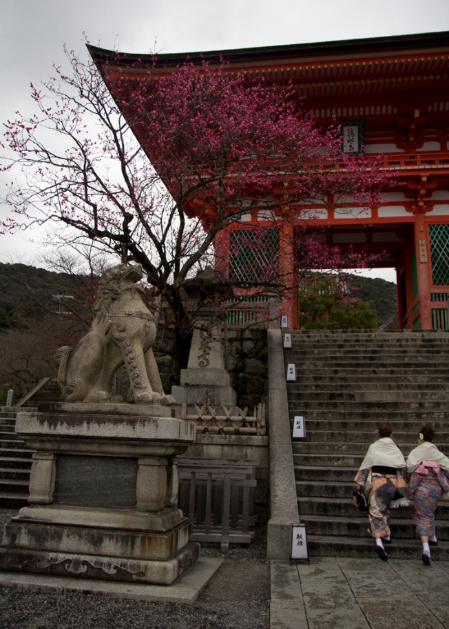 This is the entrance to Kiyomizu-dera, a truly gorgeous Buddhist temple.