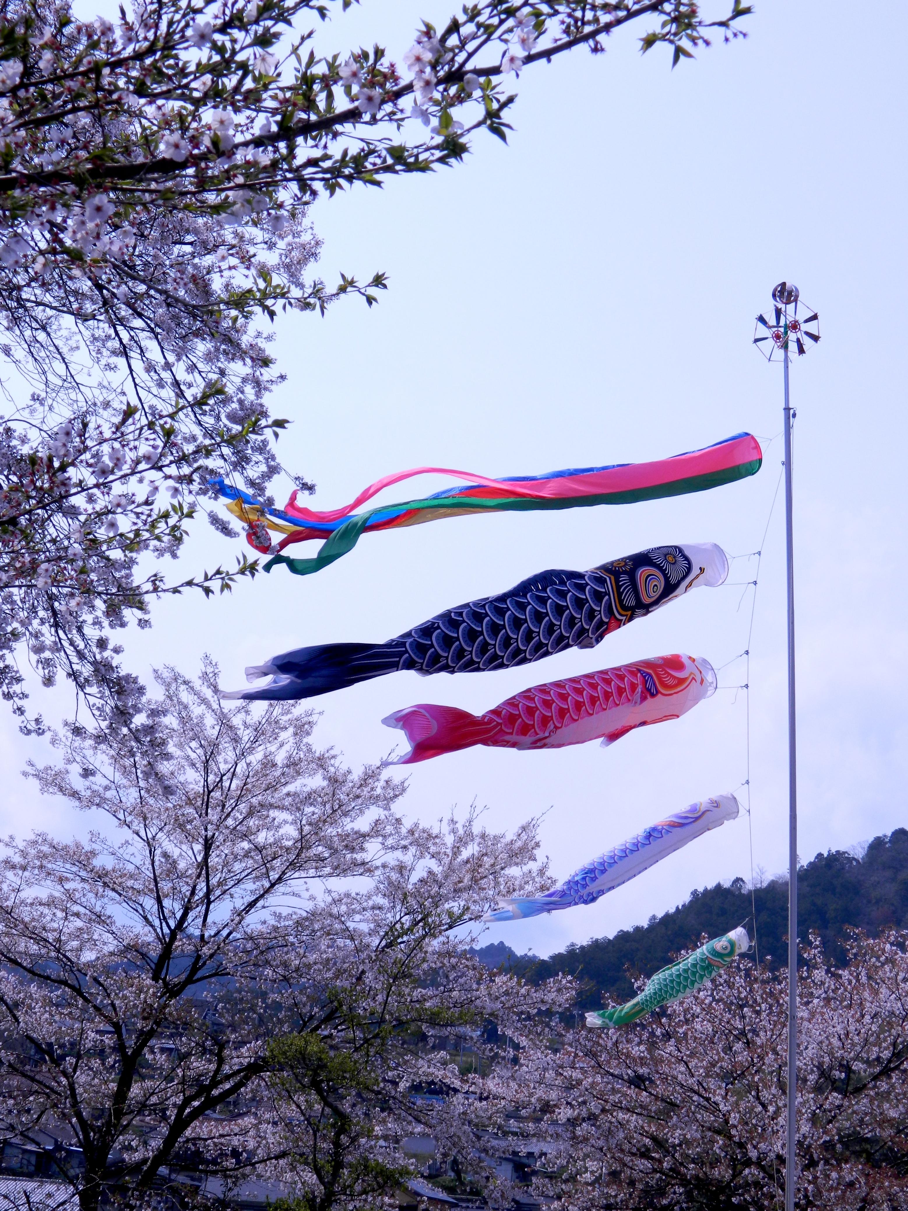 kumano kodo nature hiking u0026 ise grand shrine trip part 2 temple