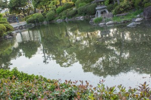 The ponds surrounding Osaka castle were beautiful and it couldn't have been a better season to visit than late spring.