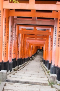 Each torii gate is donated by a local business, and businesses all over Japan now. There are over 10,000 torii gates now!