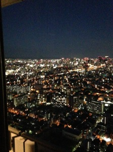 The view from the Osaka at night! It was beautiful!
