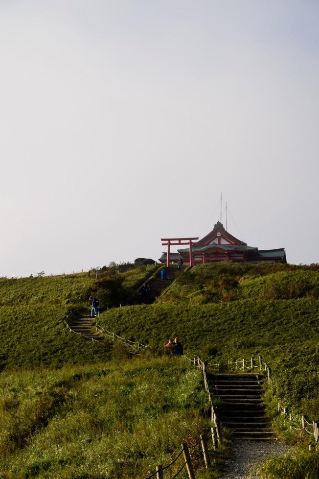 f161105_tokyo_climb-to-the-temple_tamlynkurata