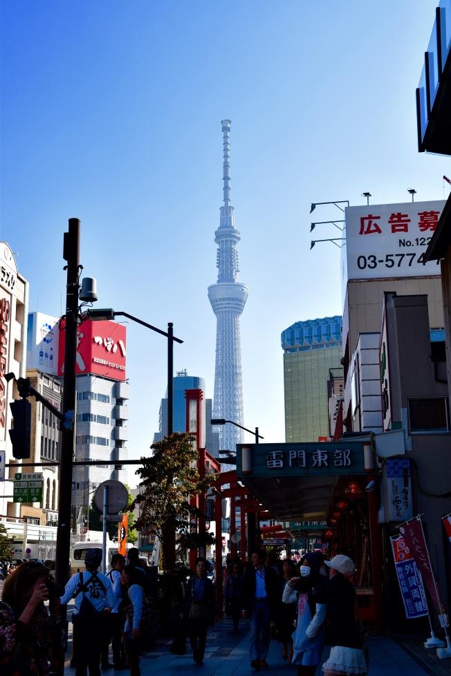 f16901_tokyo_tokyo-sky-tree_tamlynkurata