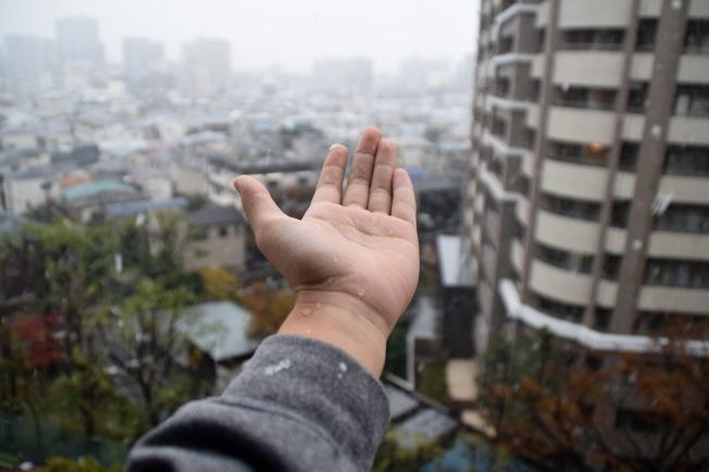 f1614010_tokyo_first-snow_tamlynkurata