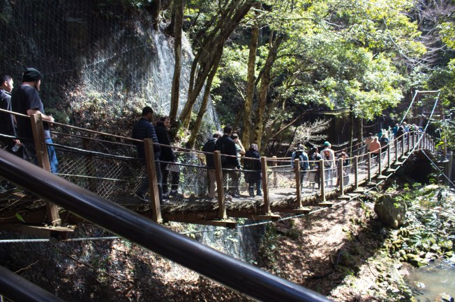 SP18806_Izu_Students Crossing a Bridge at Kawazu Seven Falls_KaylaAmador