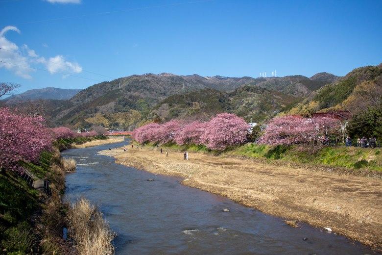 SP18808_Izu_Kawazu River_KaylaAmador